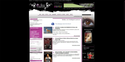 Ellasan web design 12